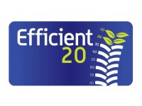 Efficient20