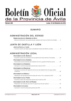 Boletín Oficial de la Provincia del lunes, 10 de diciembre de 2012