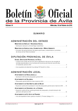 Boletín Oficial de la Provincia del miércoles, 13 de febrero de 2013