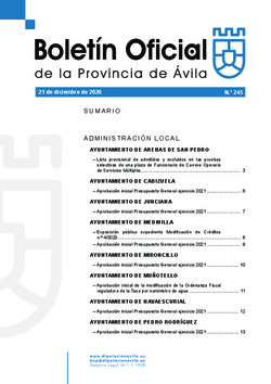 Boletín Oficial de la Provincia del lunes, 21 de diciembre de 2020
