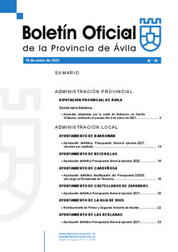 Boletín Oficial de la Provincia del lunes, 18 de enero de 2021