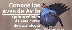 V curso de ornitología: