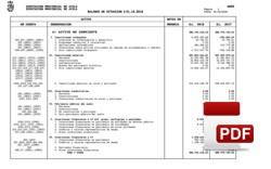 Balance de situación liquidación 2018