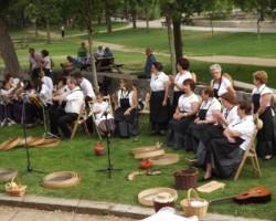 Asociación Musical Espigar