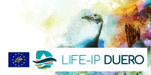 La Diputación de Ávila participa como socio en el proyecto LIFE, que coordina la Confederación Hidrográfica del Duero.