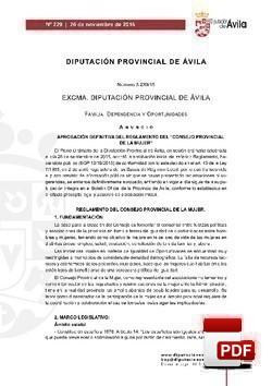 Reglamento del Consejo Provincial de la Mujer