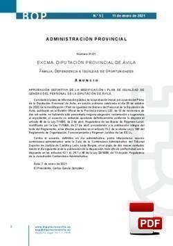 I Plan de Igualdad de Género del Personal de la Diputación Provincial de Ávila.