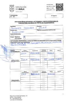 Declaración de intereses, actividades y bienes patrimoniales de Javier González Sánchez