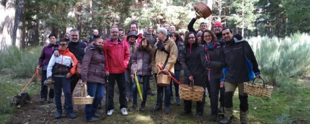 La Diputación de Ávila realiza un balance muy positivo de Mercasetas en su primera edición en la provincia