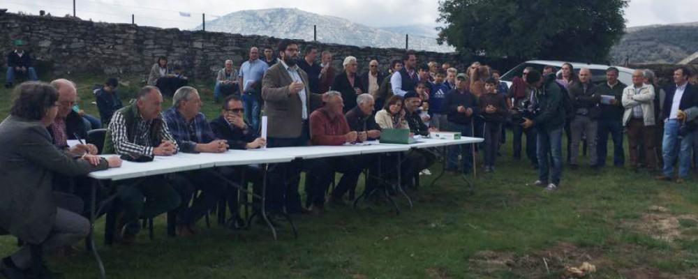 El presidente de la Diputación de Ávila destaca en la subasta de ganado la mejora genética conseguida en la raza avileña
