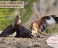Foto de La Diputación de Ávila abre el plazo de inscripción para el curso 'Conoce las Aves', que incluirá dos sendas nocturnas