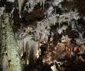 Foto de El geólogo David Domínguez pronuncia una conferencia sobre sus descubrimientos en las Cuevas del Águila