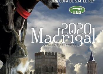 Séptima cita de Madrigal de las Altas Torres con el Campeonato de España de Galgos (3º Fotografía)