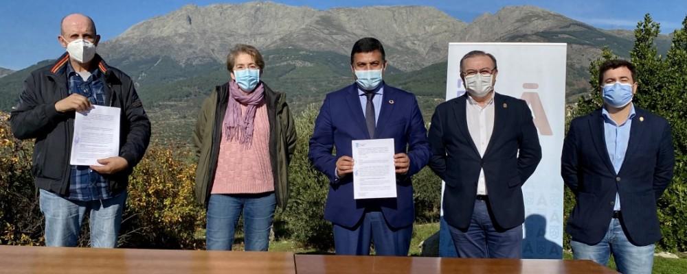 La Diputación impulsa el aceite de oliva del Tiétar con el objetivo de lograr la primera DOP de Castilla y León