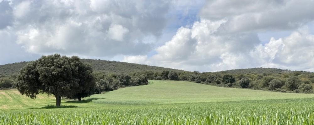 """Carlos García subraya la importancia de """"defender urgentemente el sector agroalimentario abulense"""""""