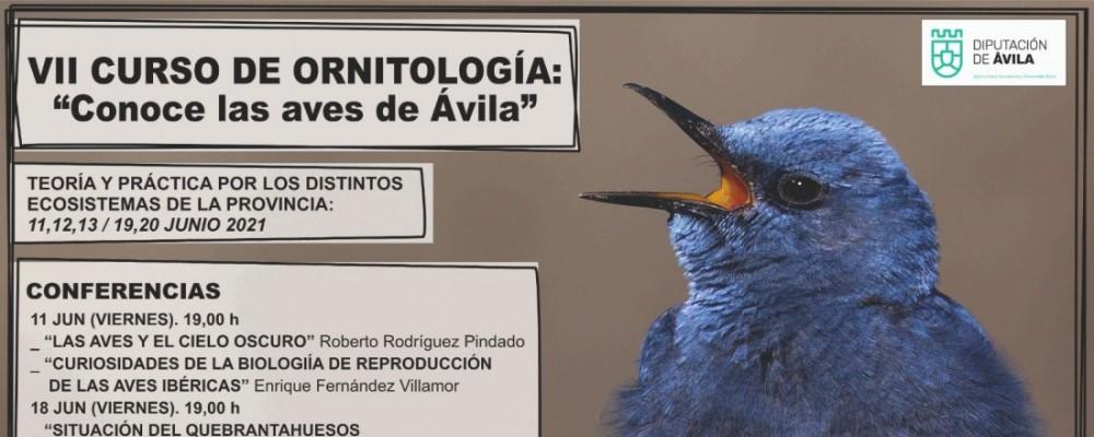 La Diputación organiza la VII edición del curso 'Conoce las aves de Ávila'