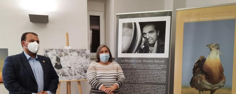 Cardeñosa, primera parada de la exposición 'Moraña rural, Moraña natural' de Gabriel Sierra 'Tatavasco'