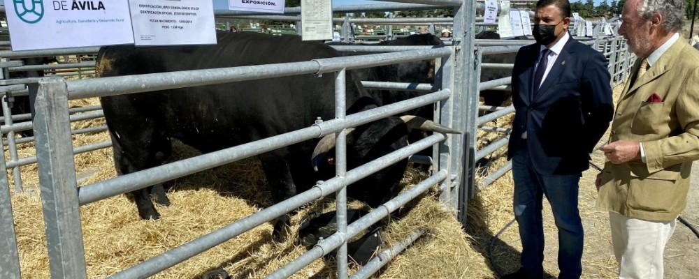 El presidente llama a colaborar con la ganadería en la inauguración del Concurso-Subasta de Raza Avileña-Negra Ibérica