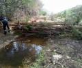 Foto de Fajinas forestales para proteger acuíferos y captaciones de agua frente al arrastre de cenizas