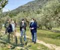 Foto de El presidente felicita a las almazaras del Tiétar reconocidas en los Premios Mezquita de aceite de oliva