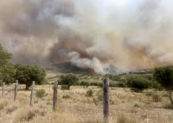 La Diputación comunica al Gobierno los daños en las infraestructuras de doce municipios por el incendio de La Paramera